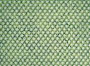 Circular Single Knit  Fabric